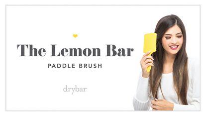 The Lemon Bar Paddle Brush