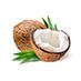 Coconut-Derived Surfactant